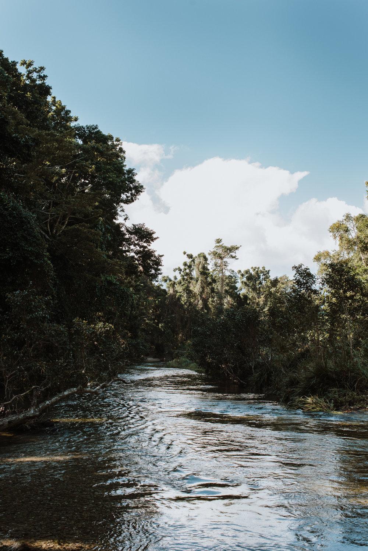 jessica-howard-photography-greenwoods-web-2.jpg