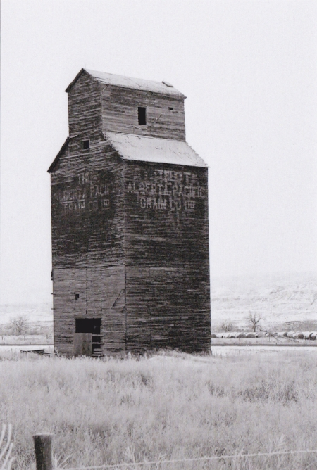 The grain elevator in Dorothy, Alberta. Photo by Chris Masterman