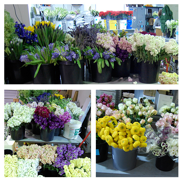 Geny's Wholesale Flowers Nashville