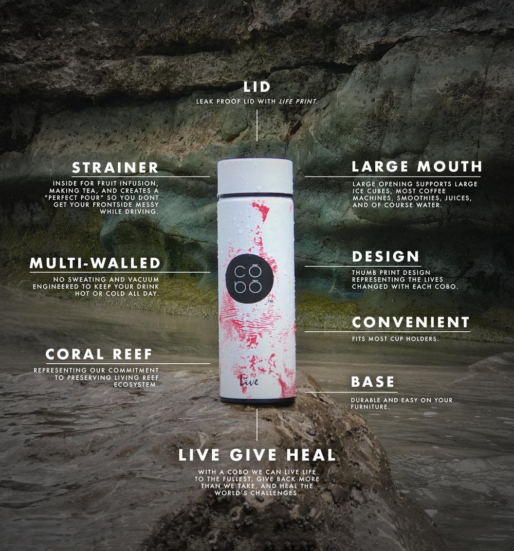 Trash Free Coral Reef_Diagram Image_COBO Website.jpg