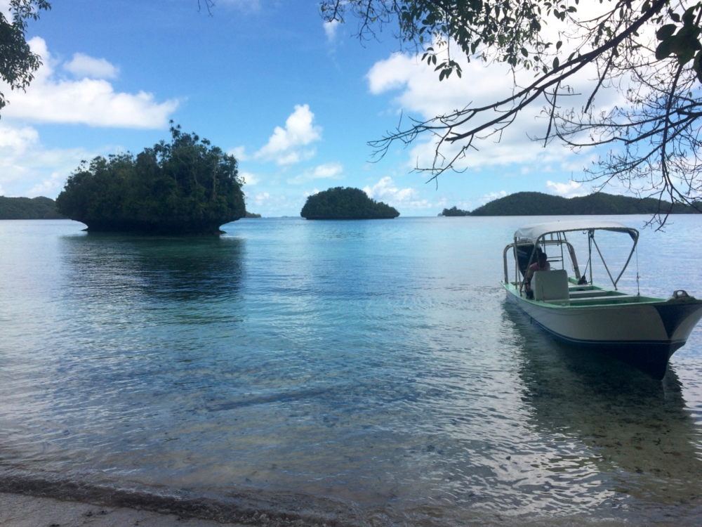 Tour operator in the protected Rock Islands Marine Park, Palau. Author's photo.