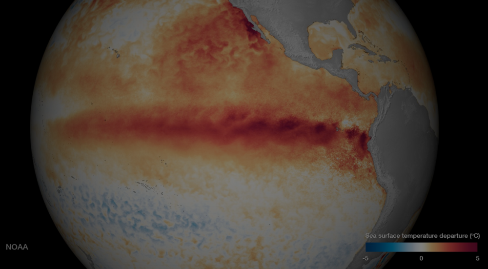 Satellite sea surface temperature (SST) from December 2015. Photo credit: NOAA