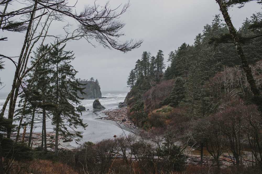 FIELD TRIP: NORTH AMERICAN WEST COAST WITH LUIS TENZA