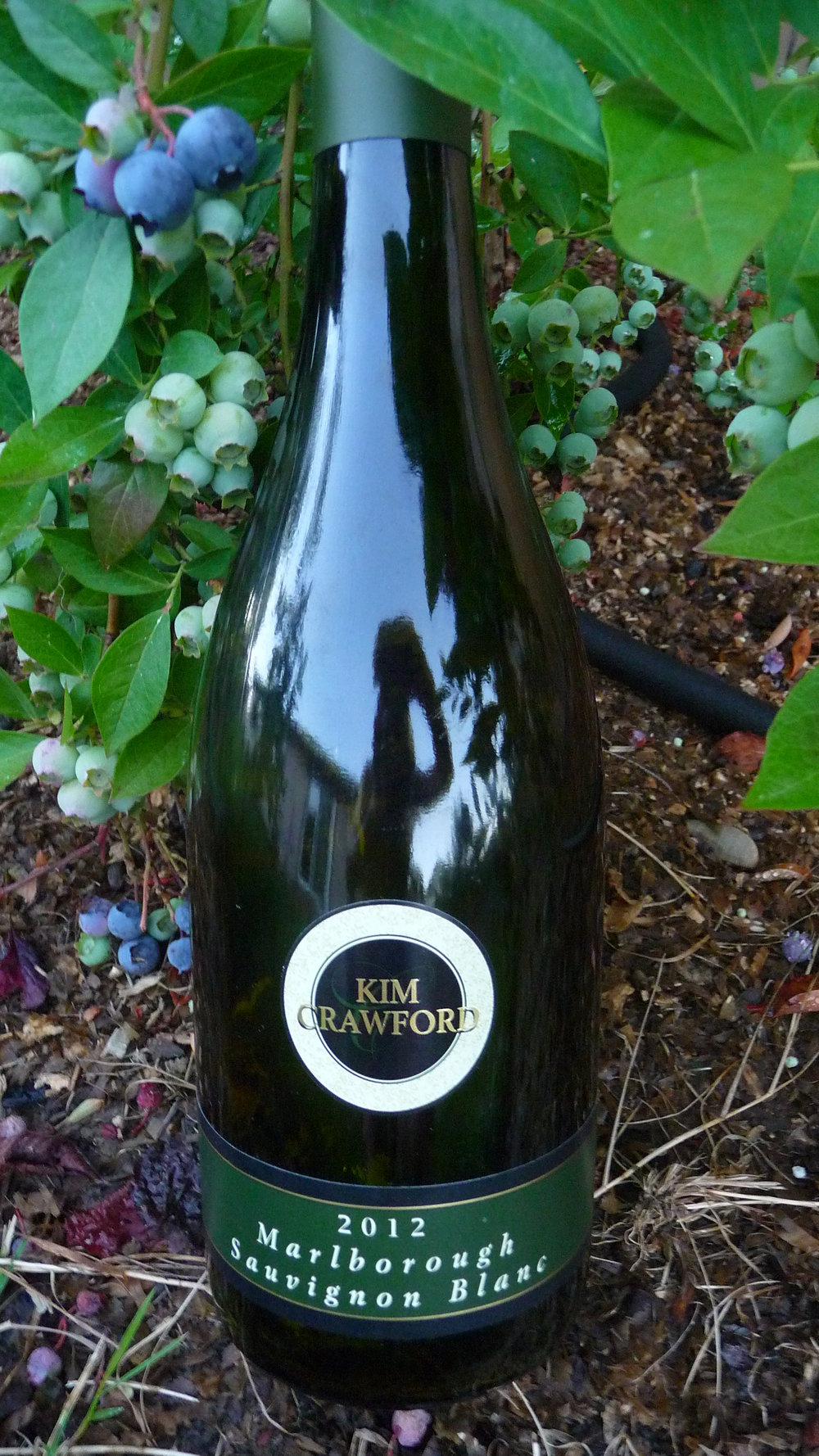 The 2012 Kim Crawford Sauvignon Blanc is luscious and refreshing with tropical fruit notes.