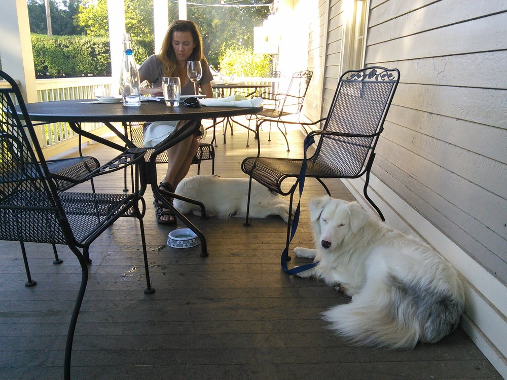 Challenge and Baby Girl chillin' on Officer's Row after romping at Fort Vancouver Park