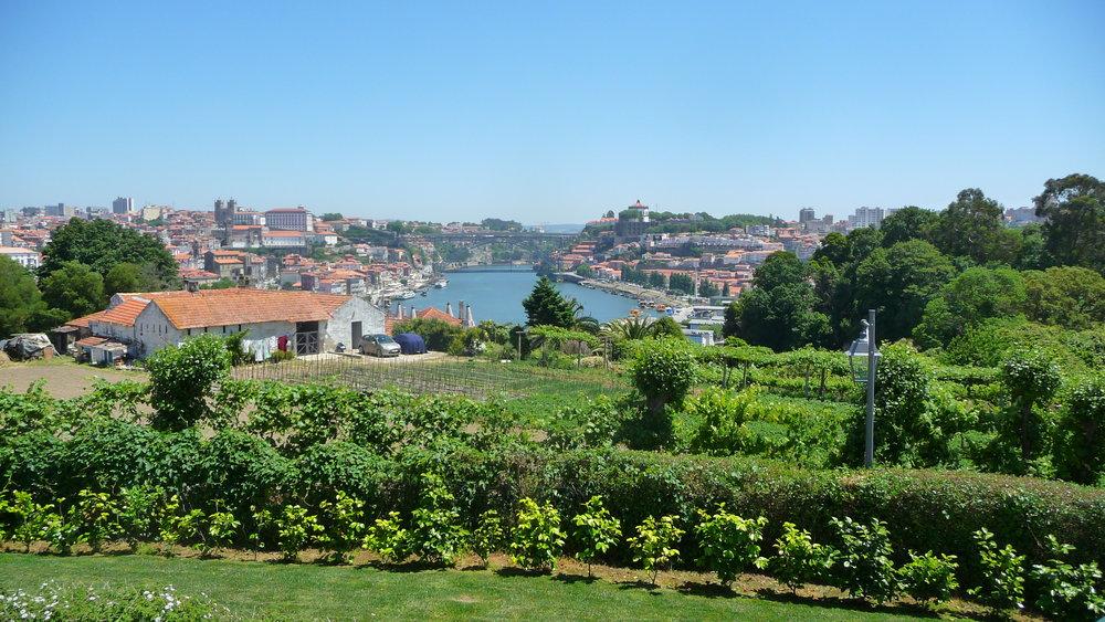 view from W. & J. Graham's in Vila Nova de Gaia, Portugal (Porto is on the left)