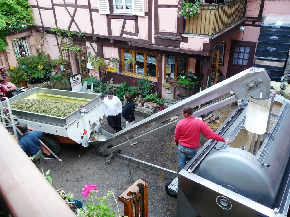Staying at Domaine Martin Jund in the fall allows travelers to witness crush in the courtyard of this working winery in the heart of historic Colmar along the Alsatian wine route.