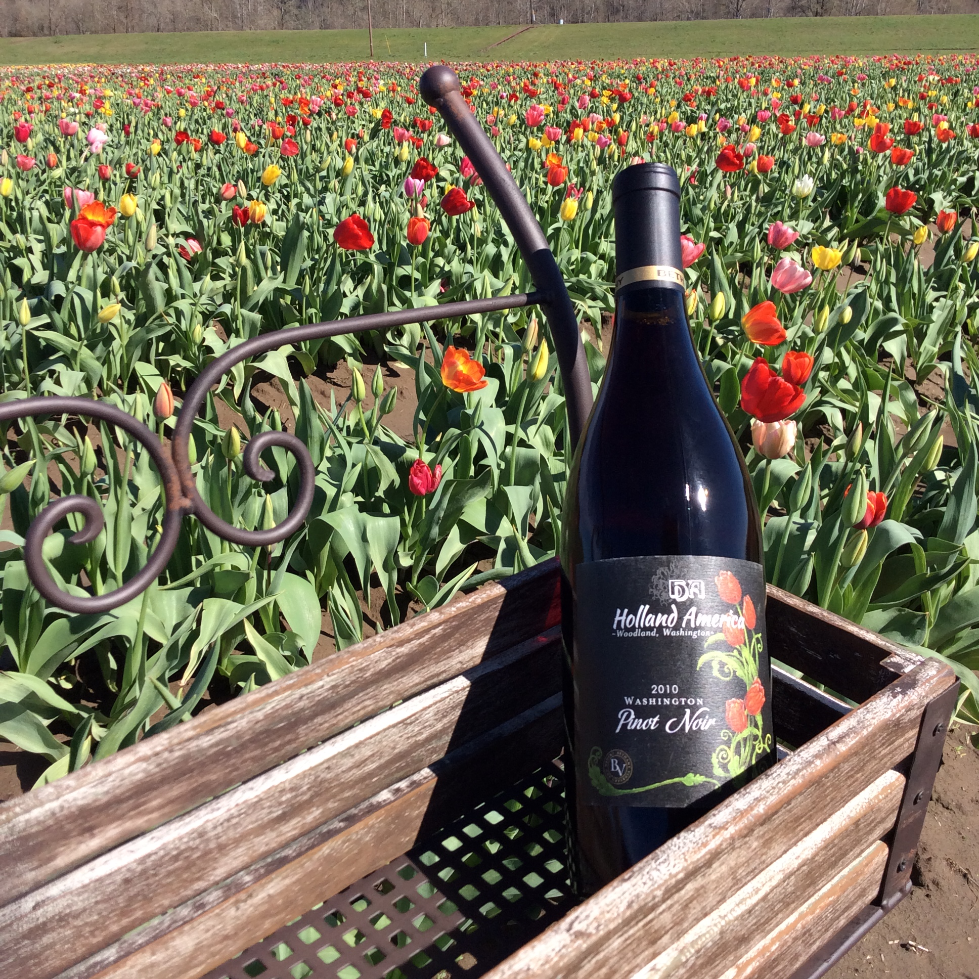 Holland America Bulb Farm's private label 2010 Pinot Noir was crafted by Bethany Vineyard & Winery owner, Walt Houser, from 100 percent estate-grown grapes. Photo courtesy of Holland America Bulb Farm.