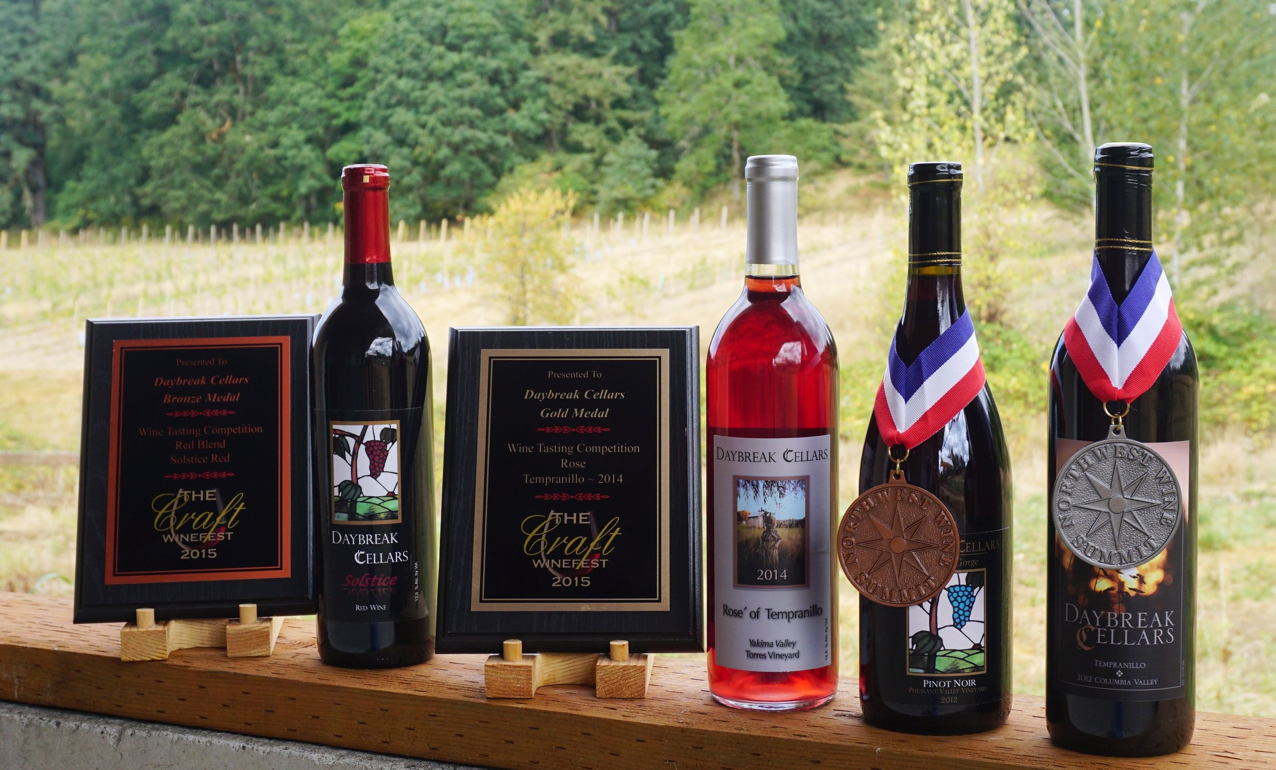 From noon–5 p.m. this Saturday, September 5th and Sunday, September 6th, wine lovers will be able to taste from Daybreak Cellars' eight-wine lineup—including their four award-winners—at the vineyard site. Viki Eierdam