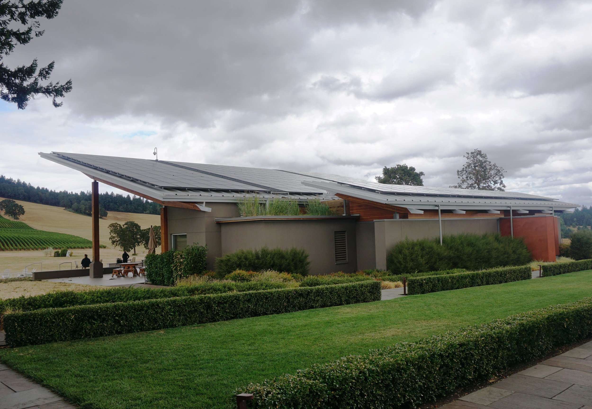 A network of rooftop solar panels is just one of the many features that garnered Dundee Hill's Stoller Family Estate its LEED gold certification. Viki Eierdam