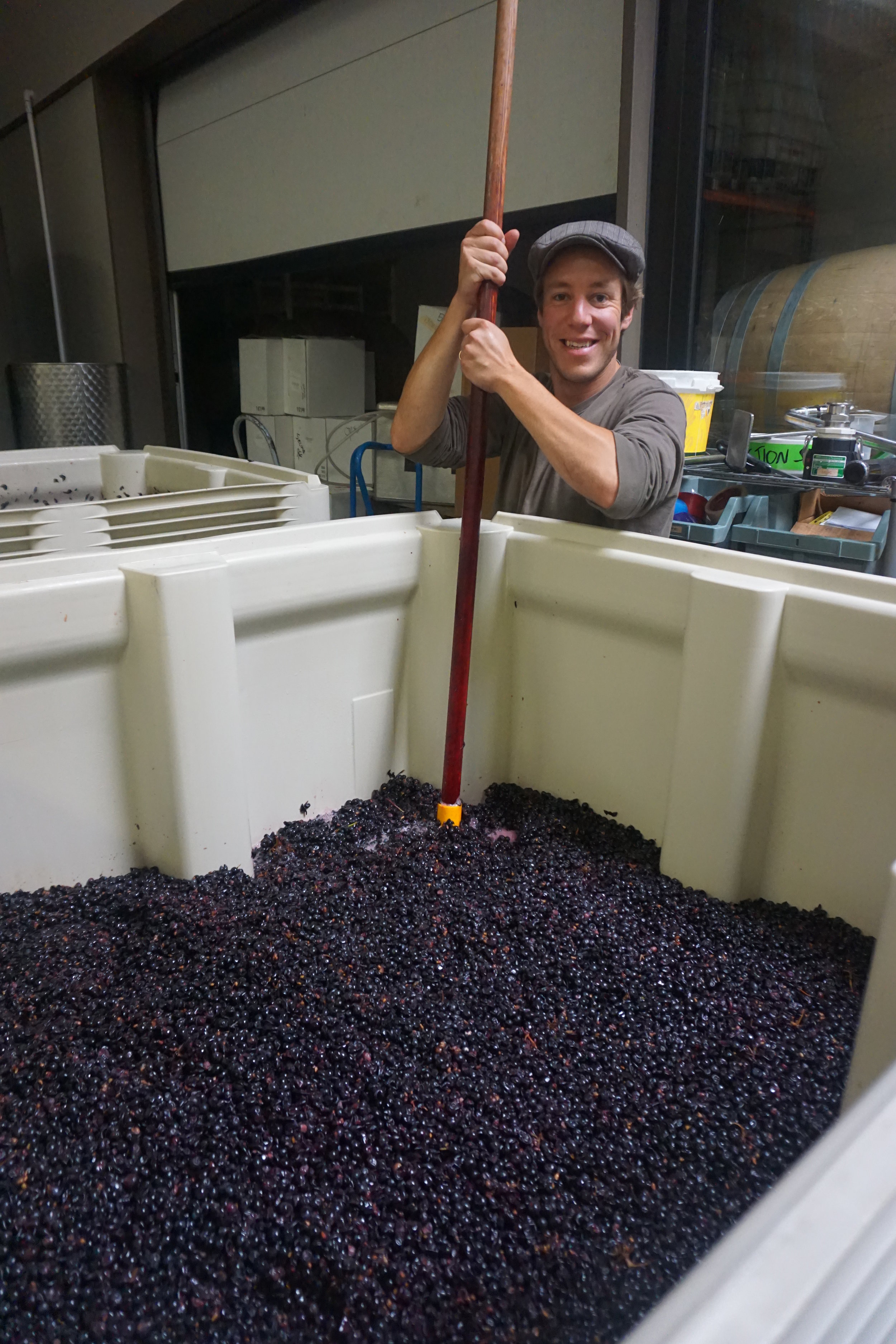 Working with Division Winemaking Company since its inception, French native, Aurelian, is seen here punching down grapes on the production floor at Southeast Wine Collective in Portland, Ore. Viki Eierdam