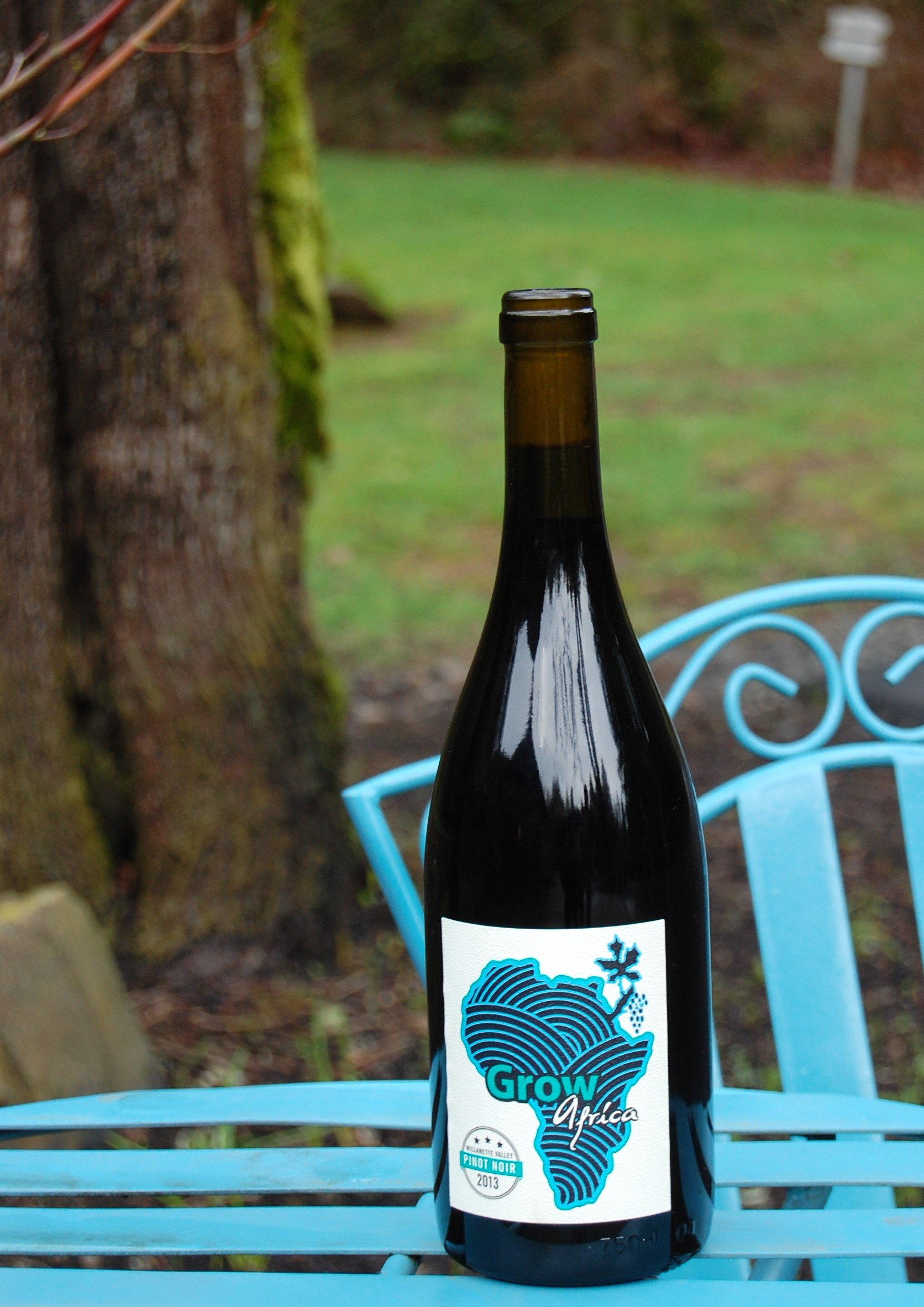 Every purchase of 2013 Grow Africa Pinot Noir supports the work of Grow International in West Africa. Grow International