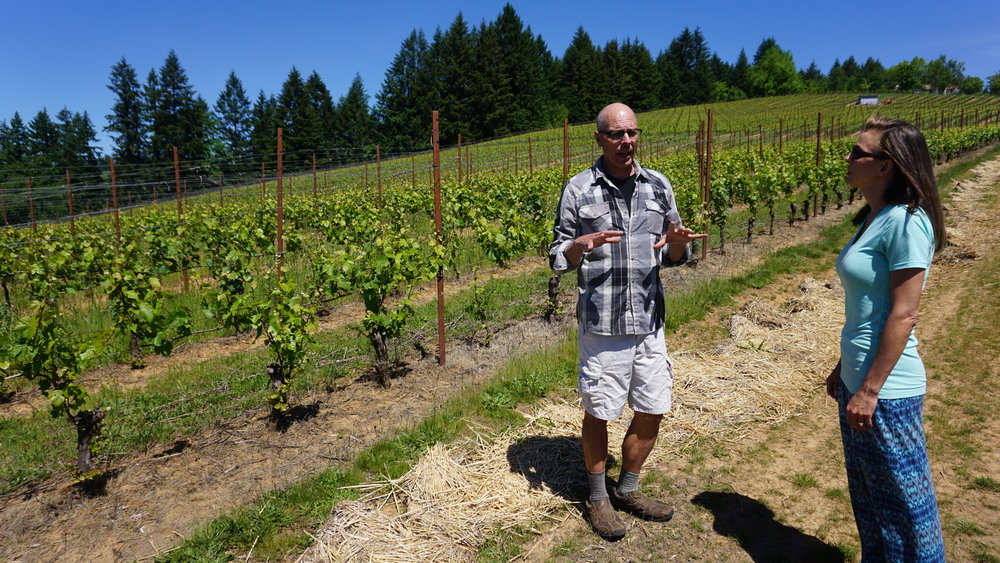 On a pleasant day in May, I enjoyed a private vineyard tour and tasting of Lenné Estate courtesy of winemaker, Steve Lutz. Dan Eierdam
