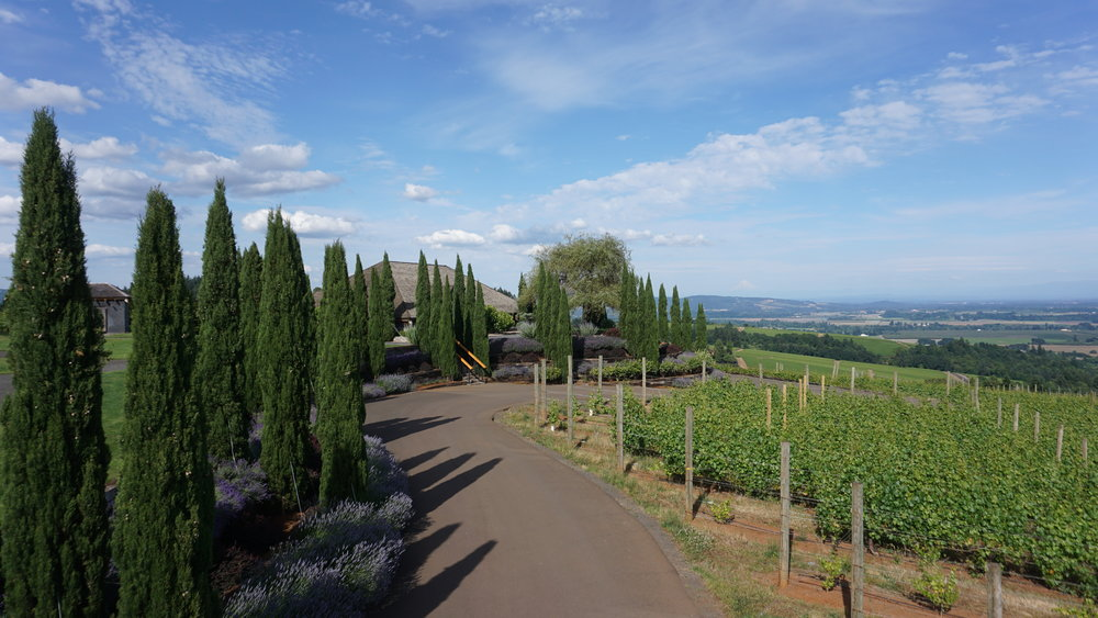 Its hilltop perch affords White Rose Estate expansive Willamette Valley views. Dan Eierdam