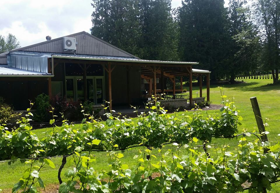 Three Brothers Winery is set among a shade-casting grove of towering evergreens, has ample covered patio seating and a comfortable inside tasting bar, as well. Photo provided.