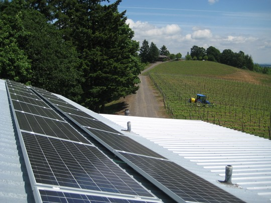 Kramer Vineyard courtesy of SolarOregon