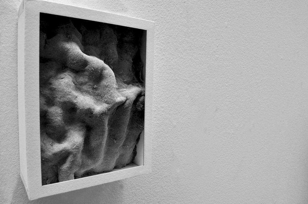 architectural_oranment_dust sheet2.jpg