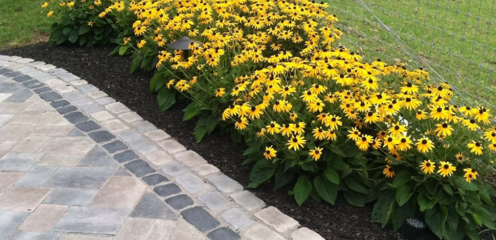 Professional landscape design with bluestone in Lebanon, PA