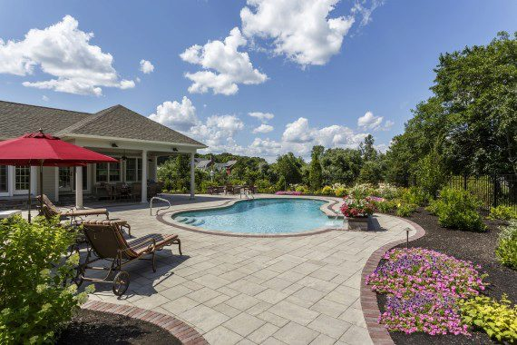 Poolside Plantings in the Hamburg, PA Area: How to Choose the Right Greenery