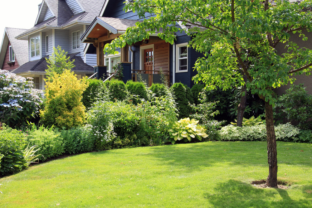 A Guide to Year-Round Lawn Care in Berks County, PA