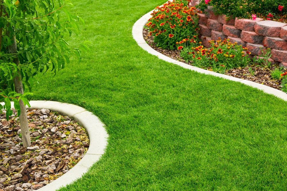 Lawn Care: 3 Things You Need to Know About Weed and Crabgrass Control in Reading, PA