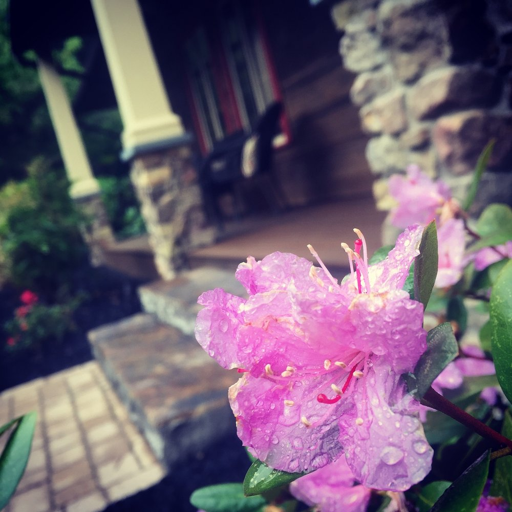 Top landscape maintenance in Exeter PA