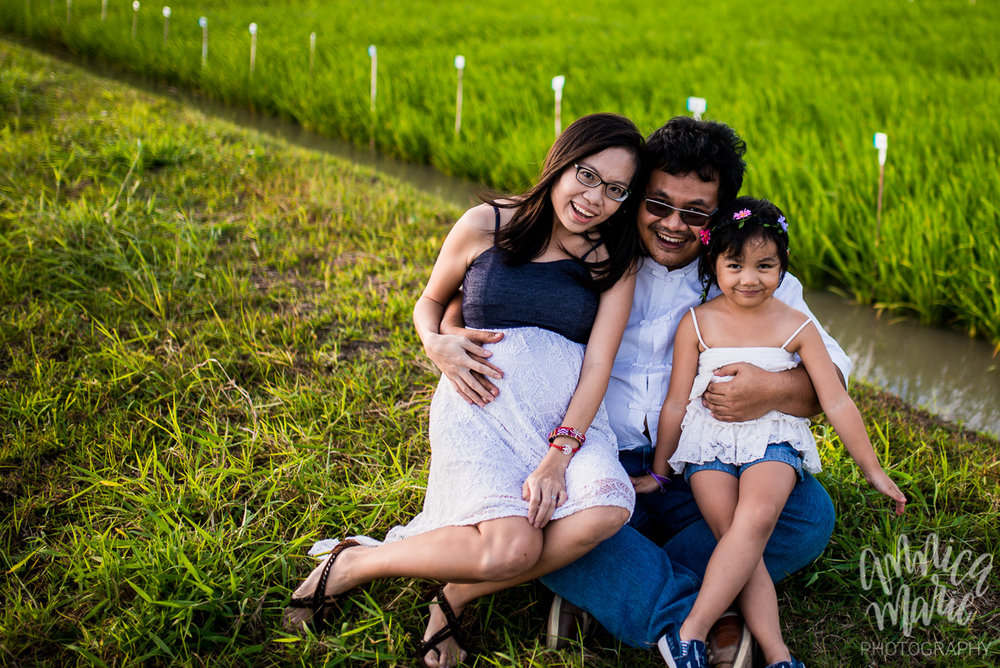 family photo maternity rice fields