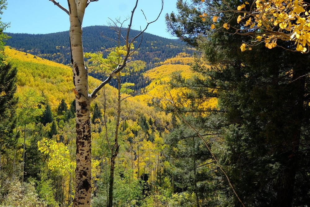 Aspen Vista Trail 2016