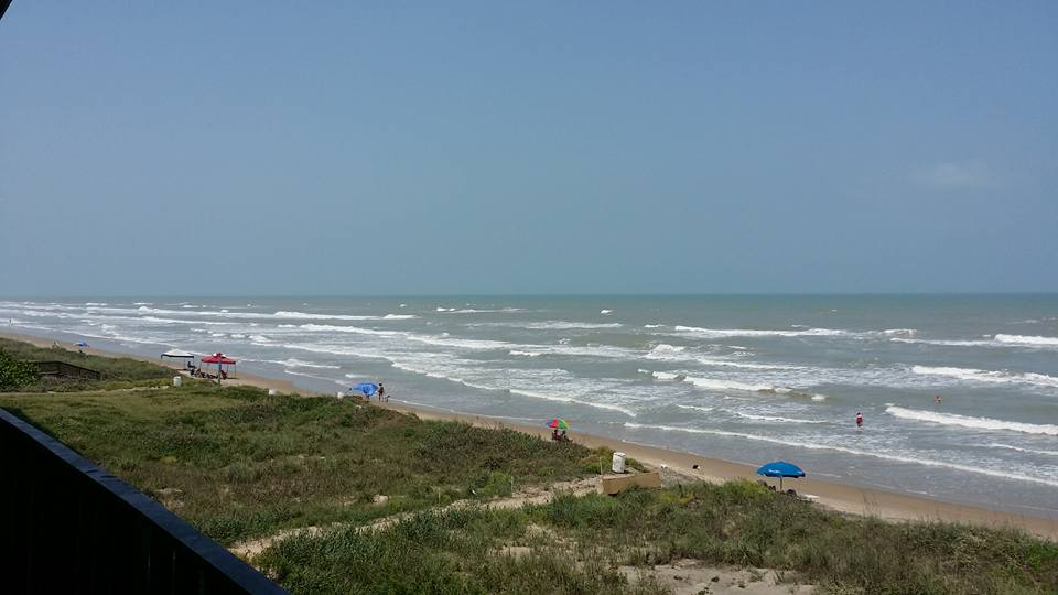 Arriving South Padre Island and Dolphin Watch