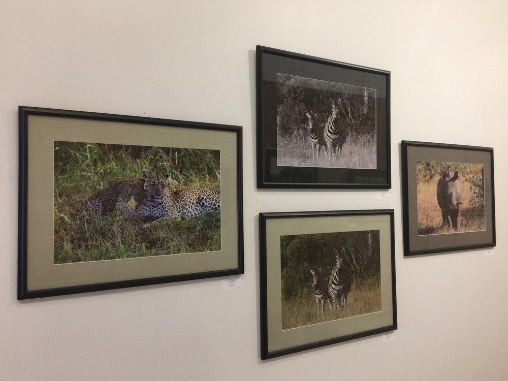 Nevard Photos on West Wall