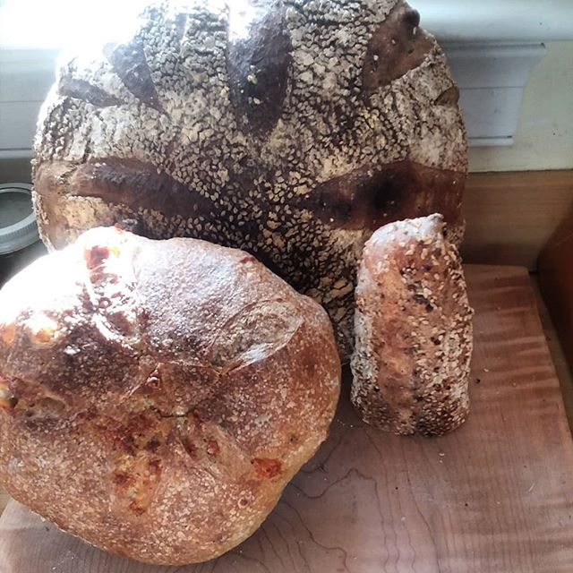 Three friends #sourdough #natchlev #localhero #cheesebread #woodfired