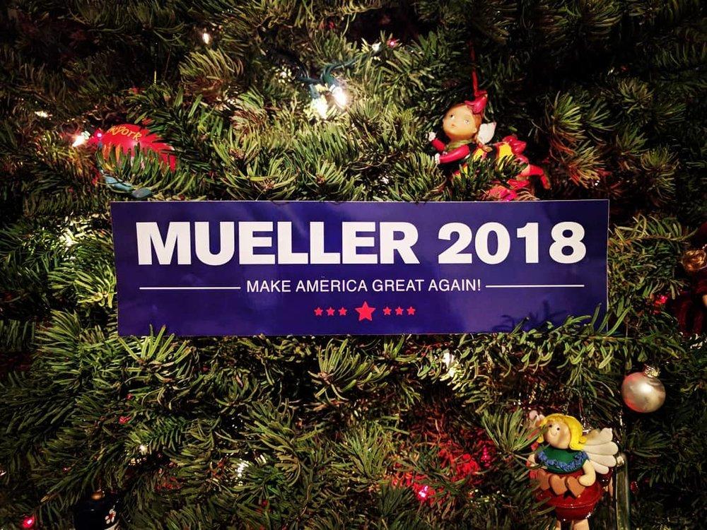 Mueller.jpg