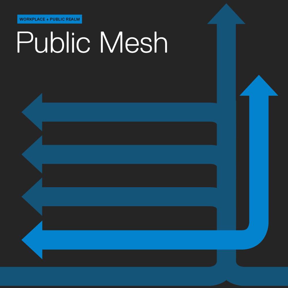 PublicMesh.jpg