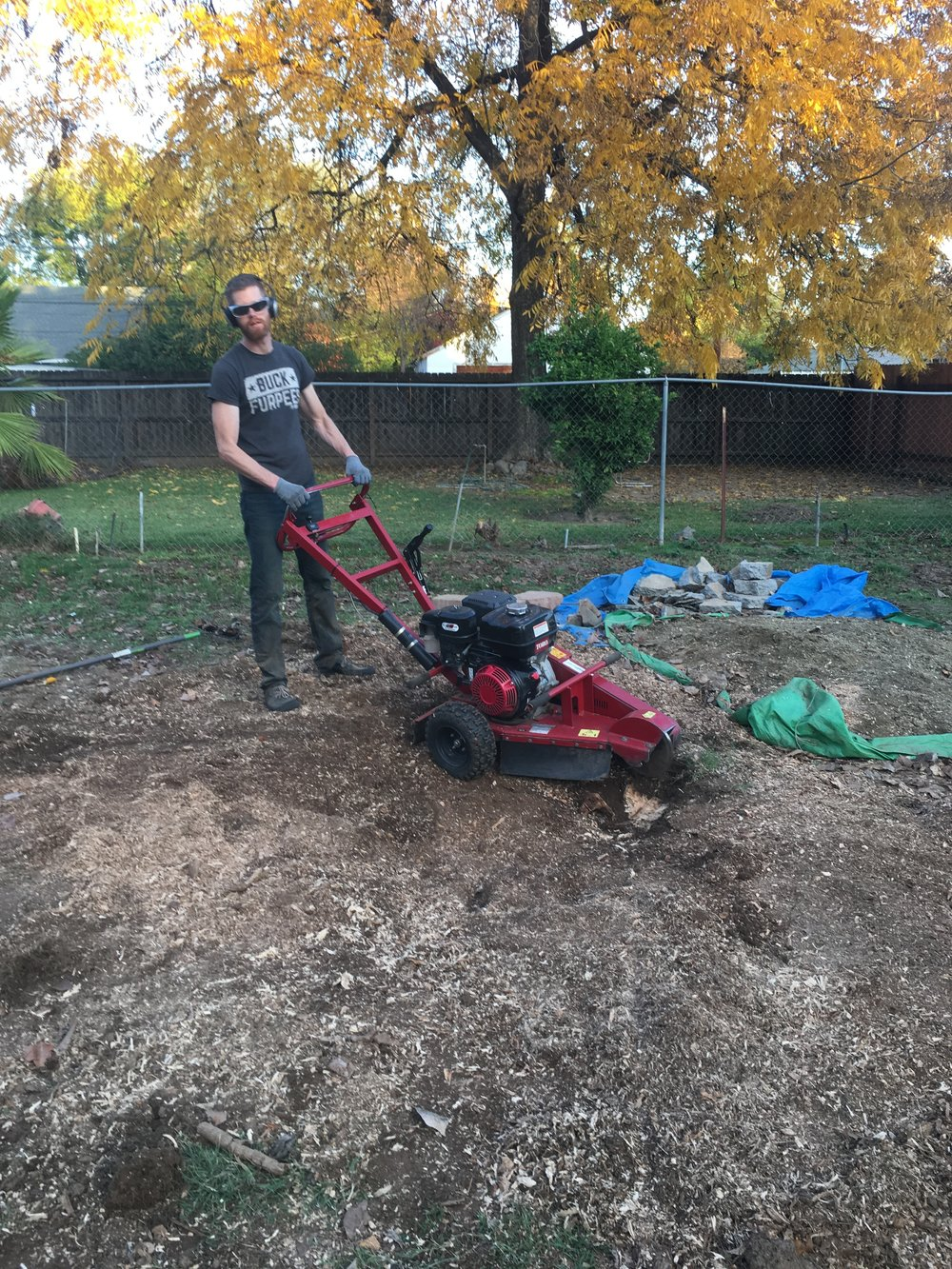 - Here's Tim, finishing off that stump!