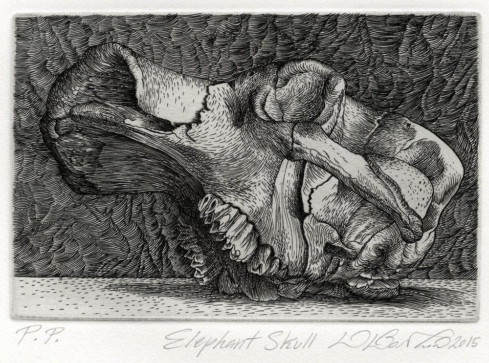 elephantskull_detail.jpg