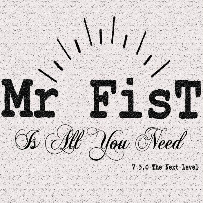 Mr Fist - Influencé par des groupes comme The offspring, Millencolin et The Ramones, Mr FisT is all you need!!!FACEBOOKVIDEO
