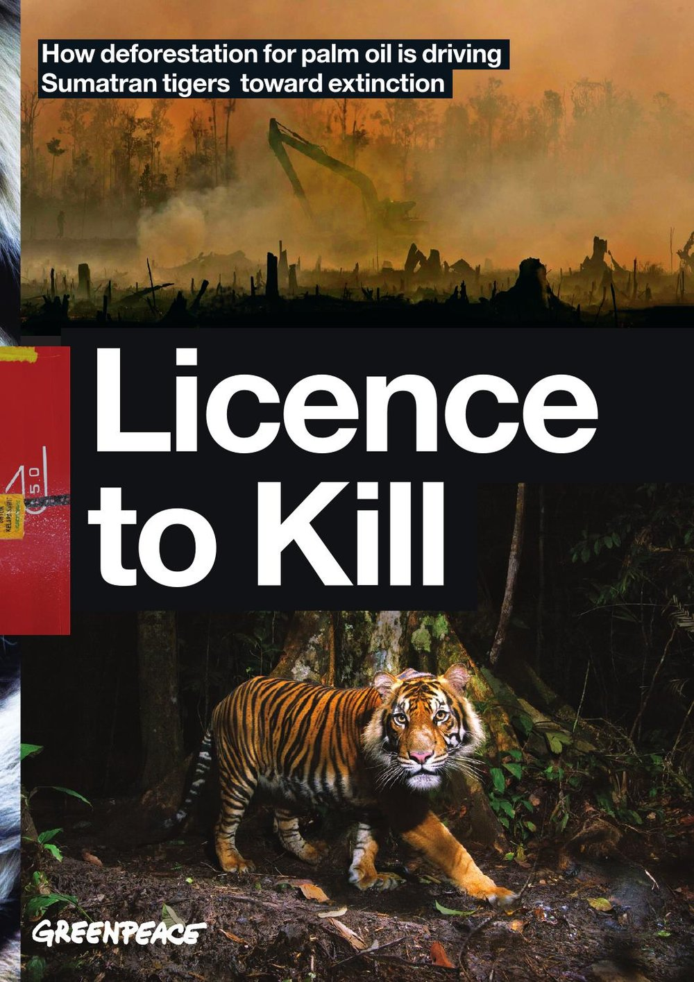 licence.jpg