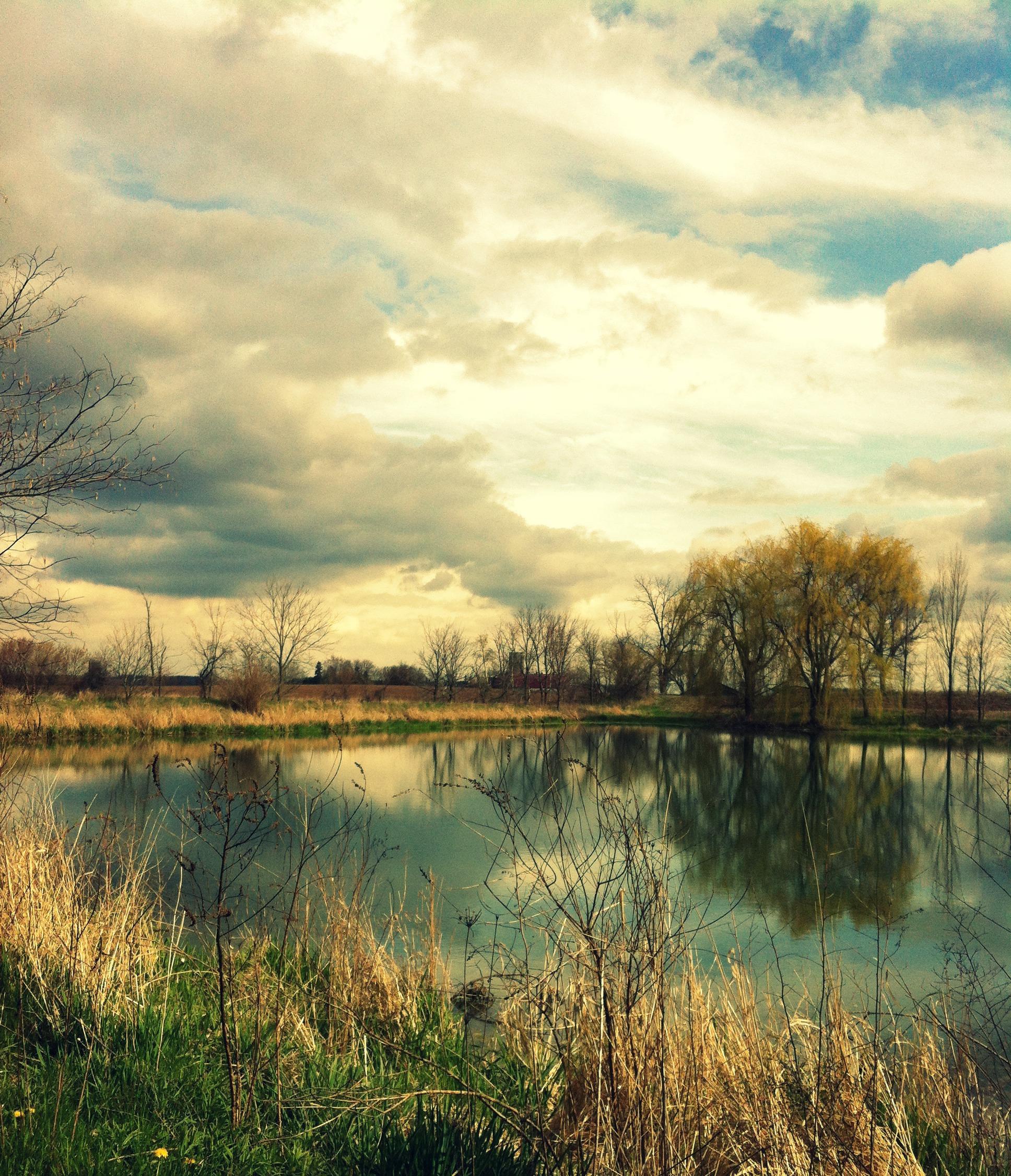 pond view spring