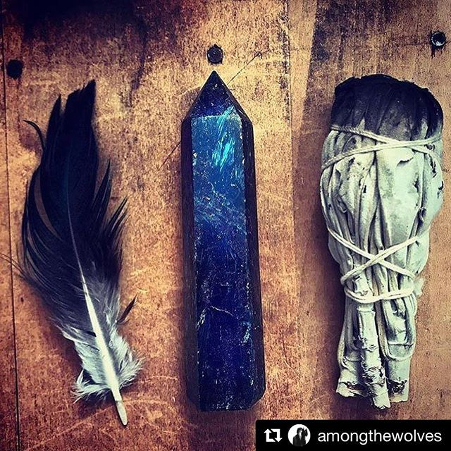 💫🖤🌙💙⚡️🖤✨ #Repost @amongthewolves (@get_repost) ・・・ We are the descendants  of the Wild Women you forgot. We are the stories you thought would never be taught. . . . They should have checked the ashes  of the women they burned alive. Because it takes a single Wild ember to bring a whole wildfire to life. . . (light up, lovers)  #momentsofmine