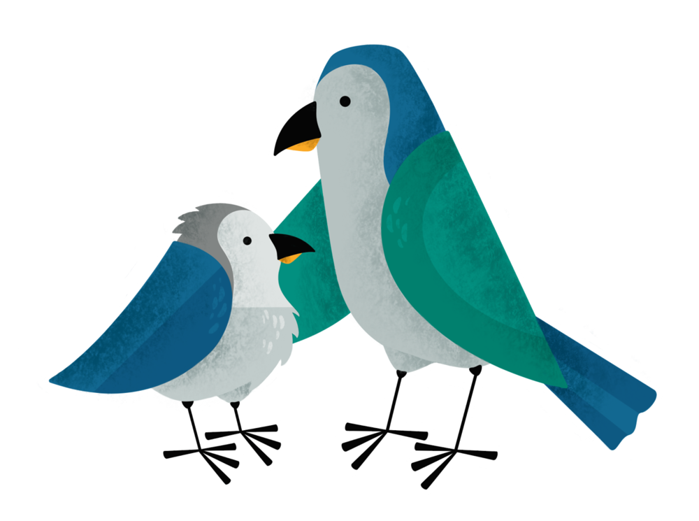 Birds_Interacting_.png