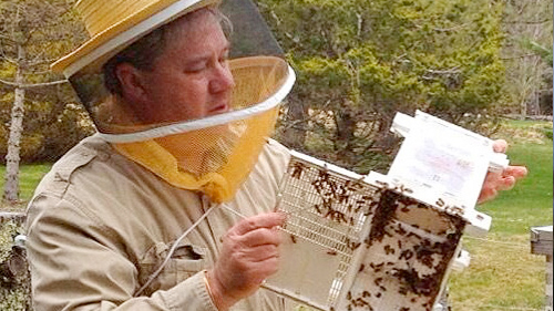 BeekeepingBasics.jpg