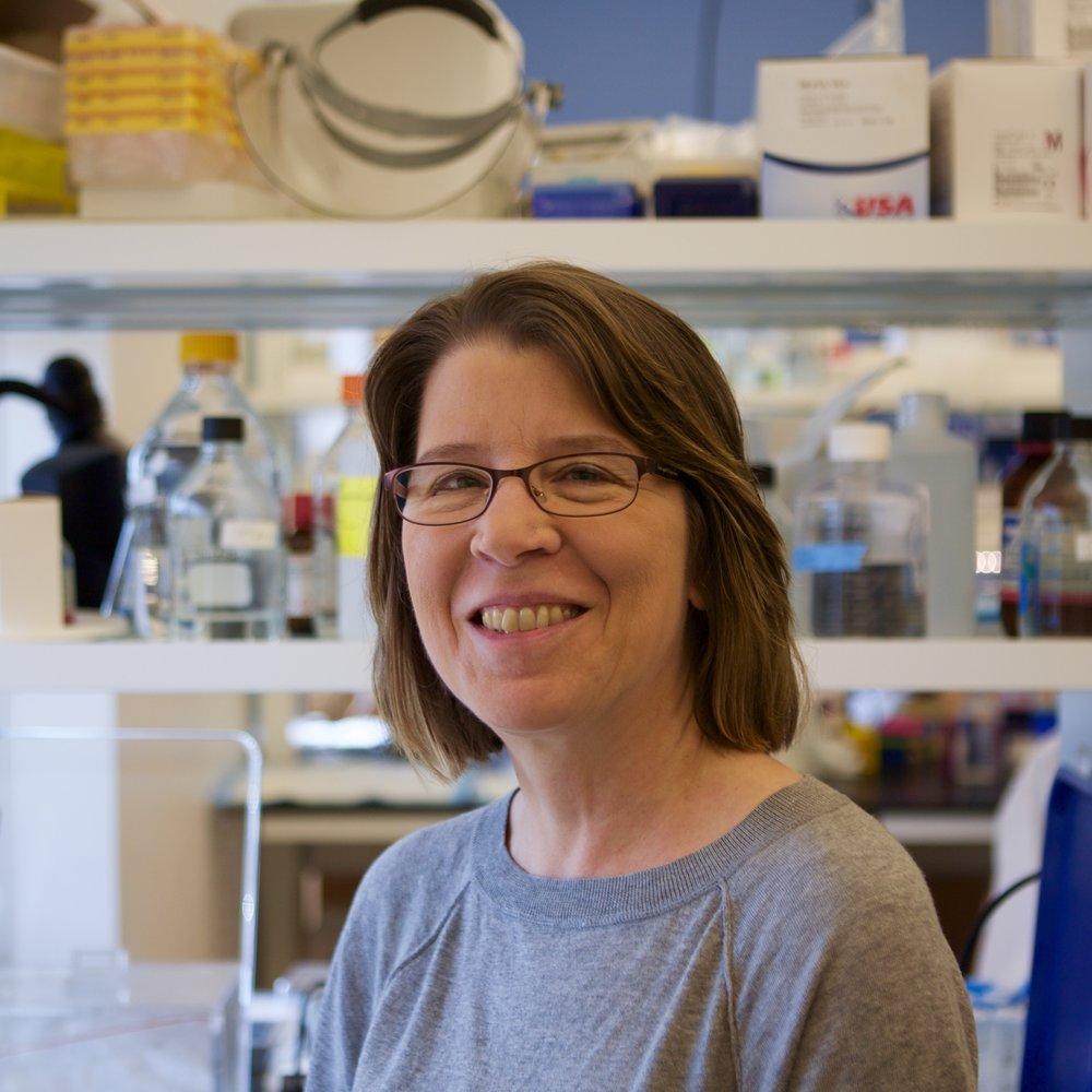 Kristin Anderson, Ph.D.