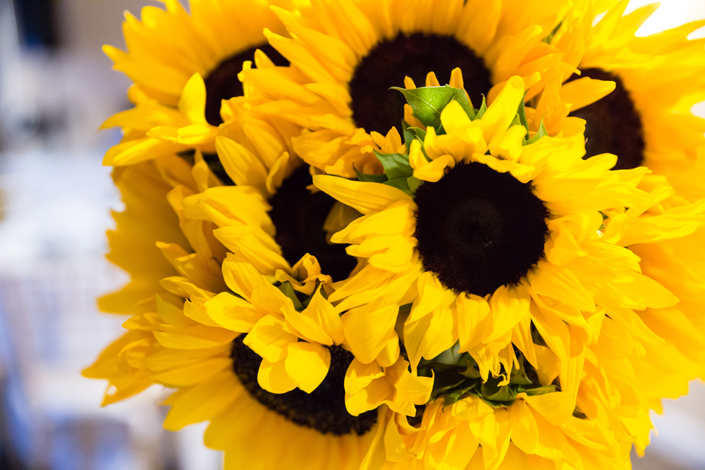 e86e1-lively-navy-yellow-harbor-wedding-bright-happy-sunflowers.jpg
