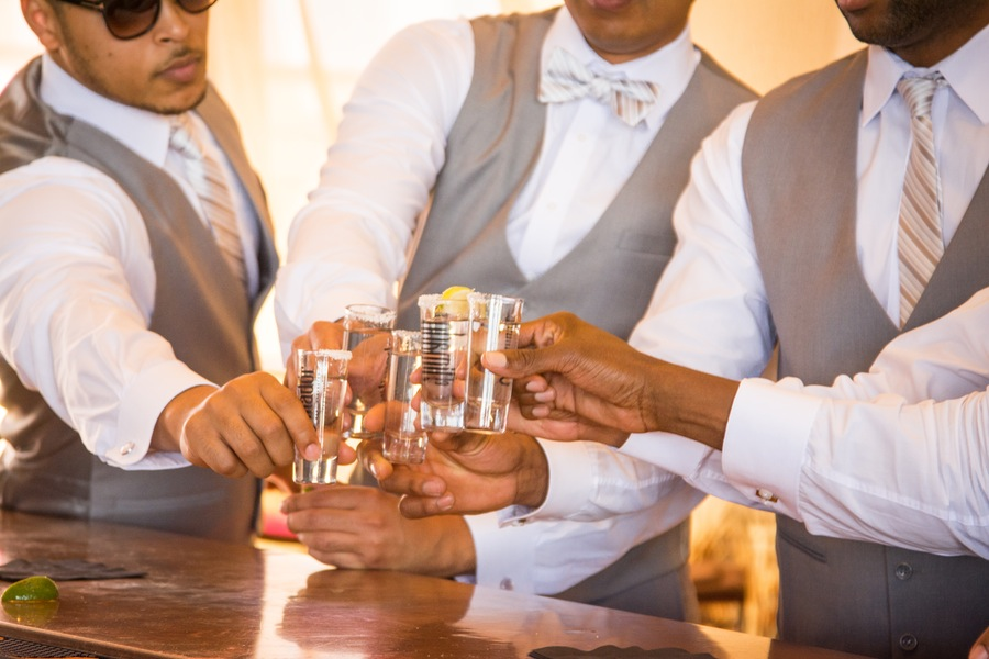 ffbb8-beautiful-joyful-harborside-wedding-cheers-to-the-bride-and-groom.jpg