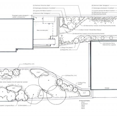 Design  - Landscape Design & ArchitectureDesign ProcessStorm Water ManagementEdible Garden