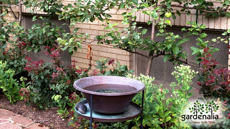 Rain collection washbin in Garden.