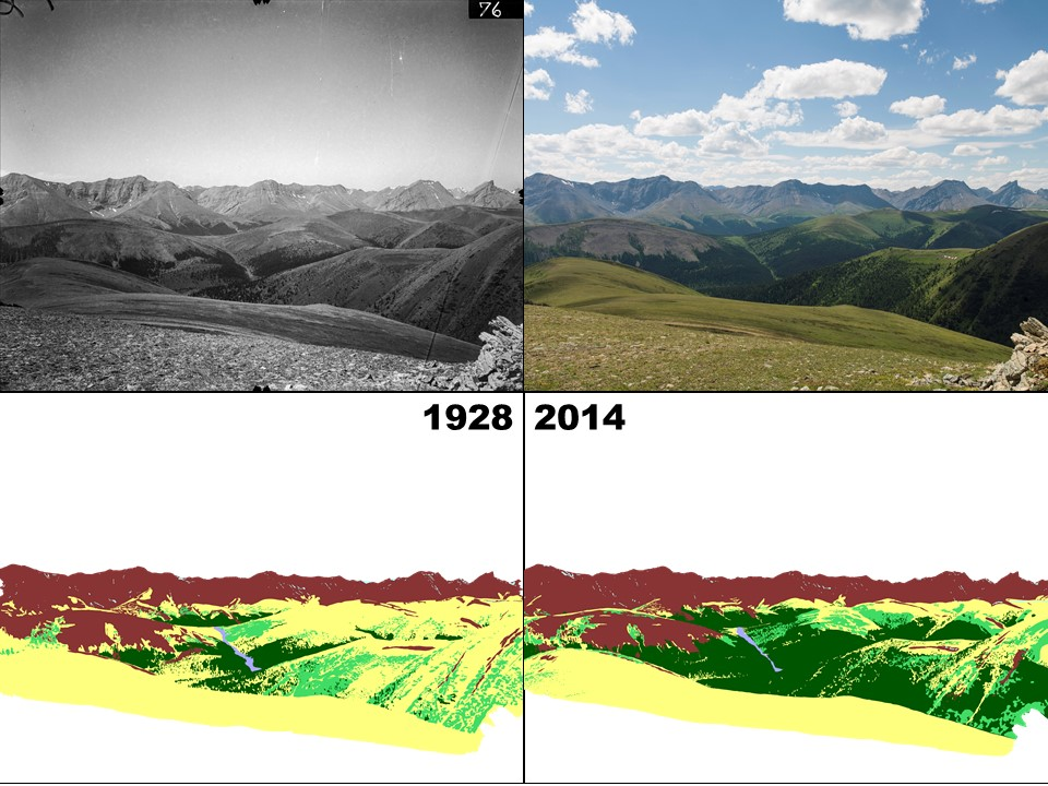 Figure 1: Landscape change through before-and-after pictures