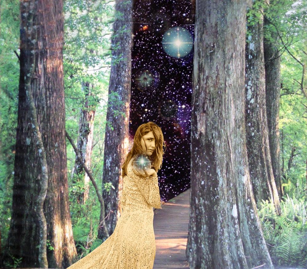COSMIC FOREST.jpg