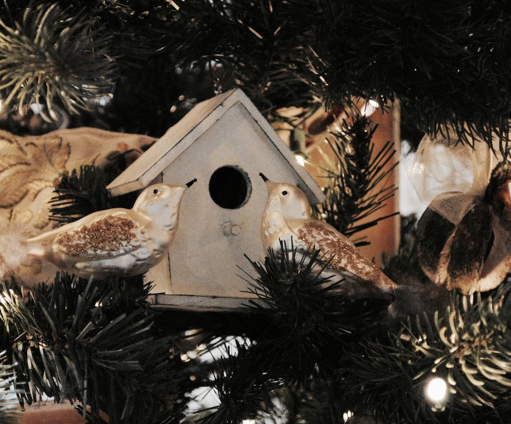Looks like these two found a winter hideaway in the holiday tree.