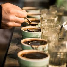 coffee cupping.jpg
